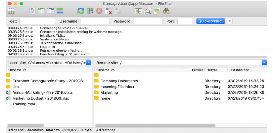 Files.com Software - Files.com connecting files to website screenshot