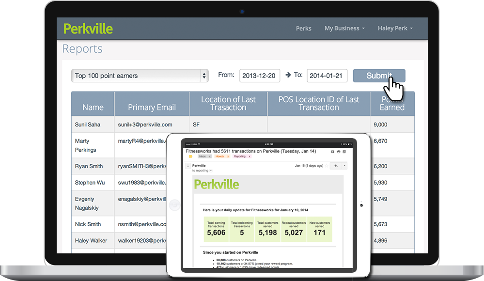 Perkville loyalty campaign reporting