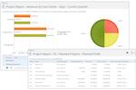 Captura de pantalla de Project Insight: Forecast Profit Revenue