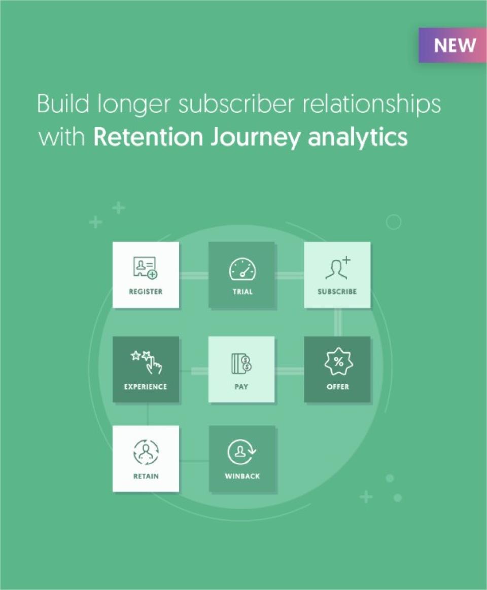 ChurnIQ Software - Retention journey