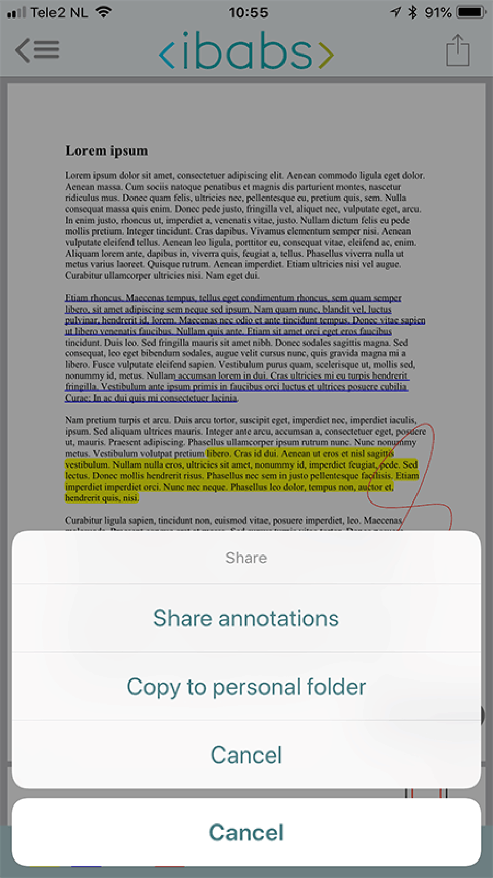 iBabs allows users to annotate meeting documents