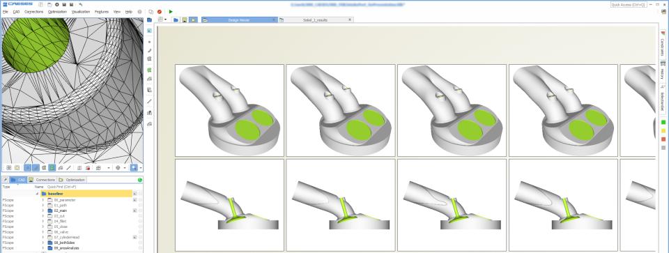 CAESES variants screenshot