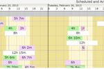 Caretime screenshot: Caretime Built-in Free Scheduling System