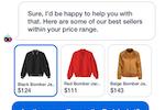 Haptik screenshot: Haptik eCommerce