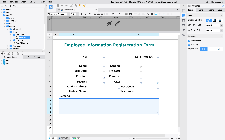 FineReport employee registration forms screenshot