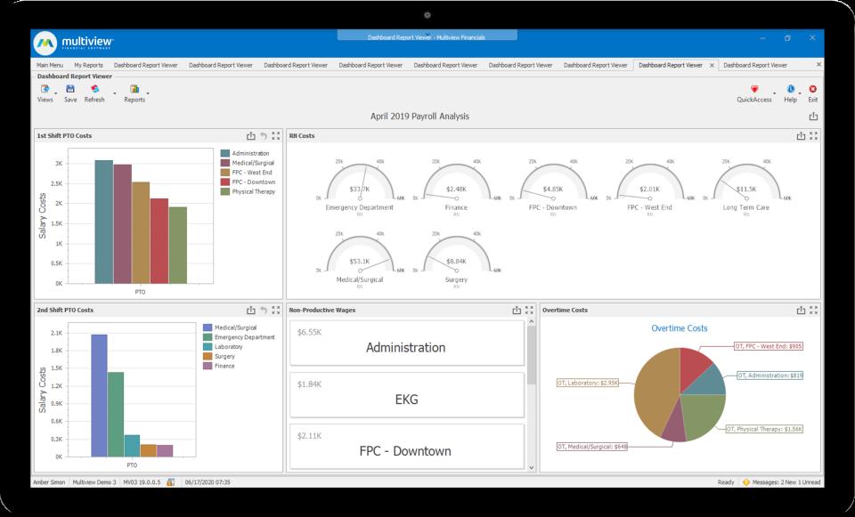 Multiview ERP Software - Payroll Analysis
