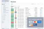 Wave Accounting screenshot: Wave Payments
