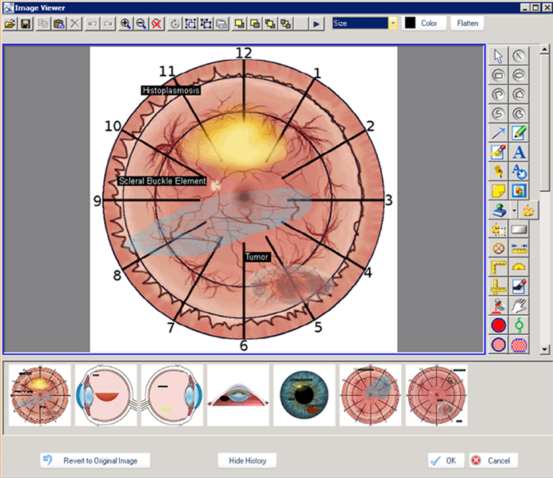 MyWINMED EMR Software - Image Viewer