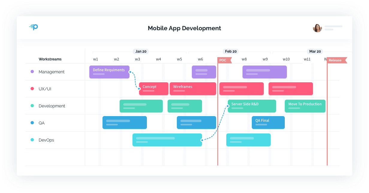 Proggio Software - Project Plan View