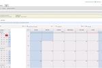 TeamPay screenshot: Display calendar view