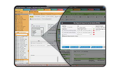 ezyVet Software - Automatic Billing