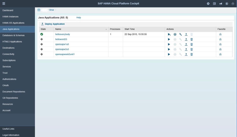 SAP HANA Cloud java applications
