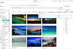 Cortex screenshot: Cortex keyword searches