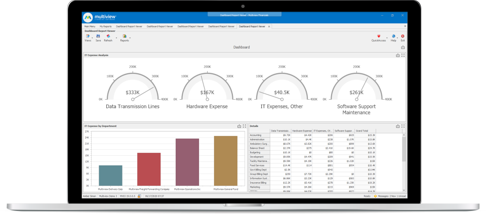 Multiview ERP Software - Expense Reports