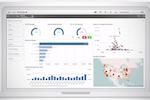 Qlik Sense screenshot: Qlik Sense Profit Analysis