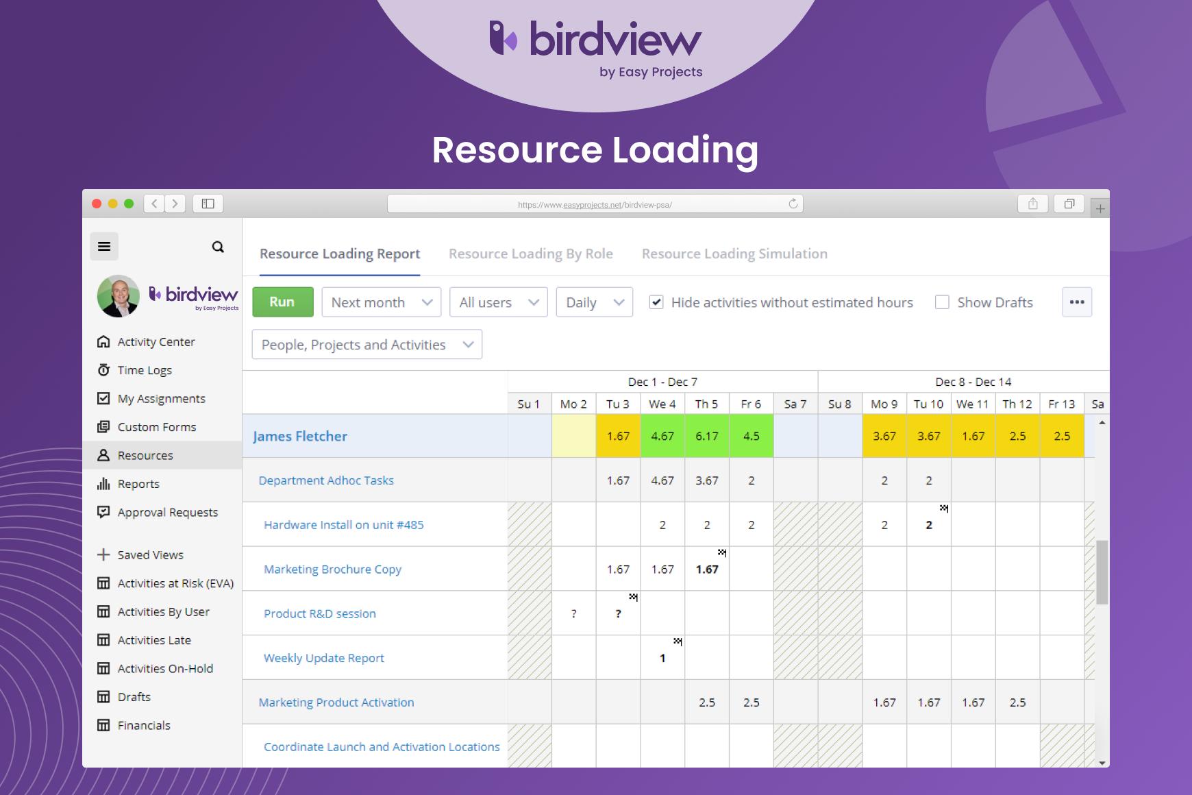 Birdview PSA - Resource Loading