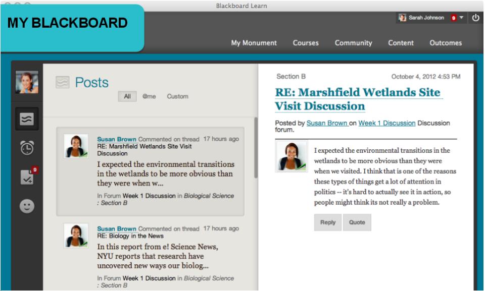 Blackboard Learn Software - 2