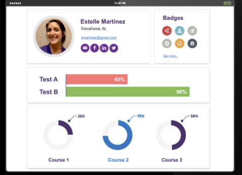 Design interactive course content