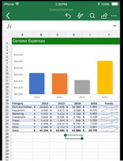 Microsoft Excel Software - 1