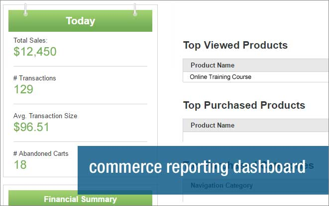 Unbound Commerce screenshot: Track sales, transcations and cart abandonments using iAPPS commerce reporting dashboard