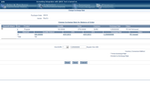 VISCO screenshot: Currency conversions can be carried out with customizable exchange rates