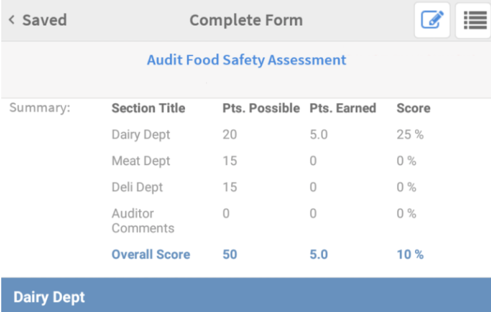 Safety Audit Documentation