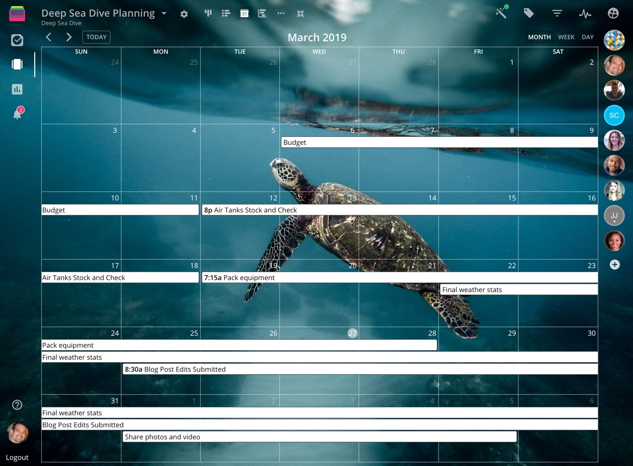 Rindle calendar screenshot