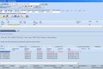 Solumina MES screenshot: iBASEt Solumina Manufacturing Execution System (MES) work order screenshot