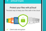pCloud Business screenshot: Users can purchase the pCloud Crypto add-on to encrypt their files