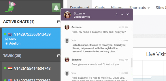 tawk.to customer interaction screenshot