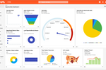 Insightly Screenshot: Gain valuable insight into the most important aspects of the business with reports and dashboards