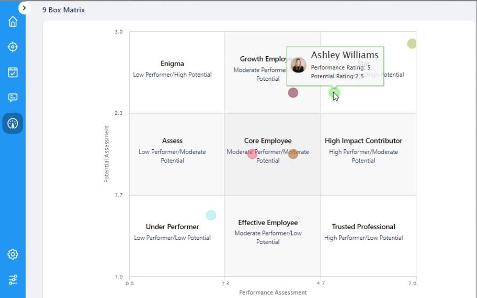 Performance Management - 9 Box Matrix View