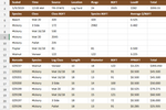 Capture d'écran pour Tally-I/O : Excel Load Report