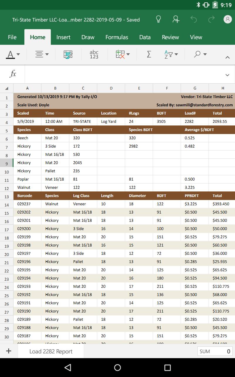 Excel Load Report