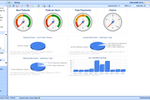 NephroChoice screenshot: Interactive dashboards for tracking overall financial performance