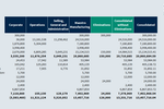 Planning Maestro screenshot: Financial Consolidation