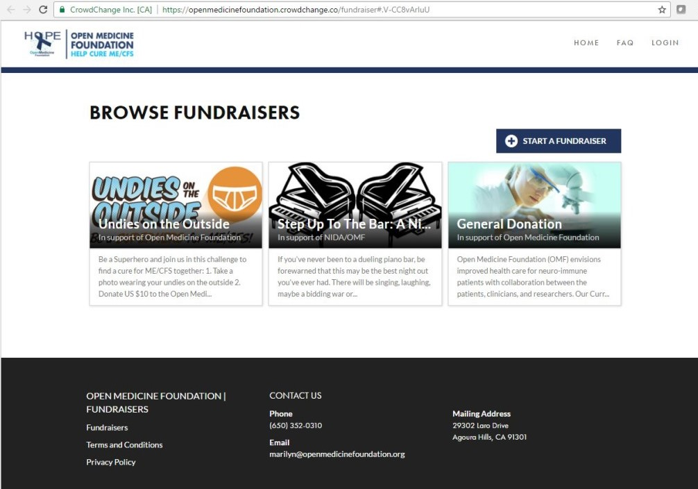 CrowdChange custom websites