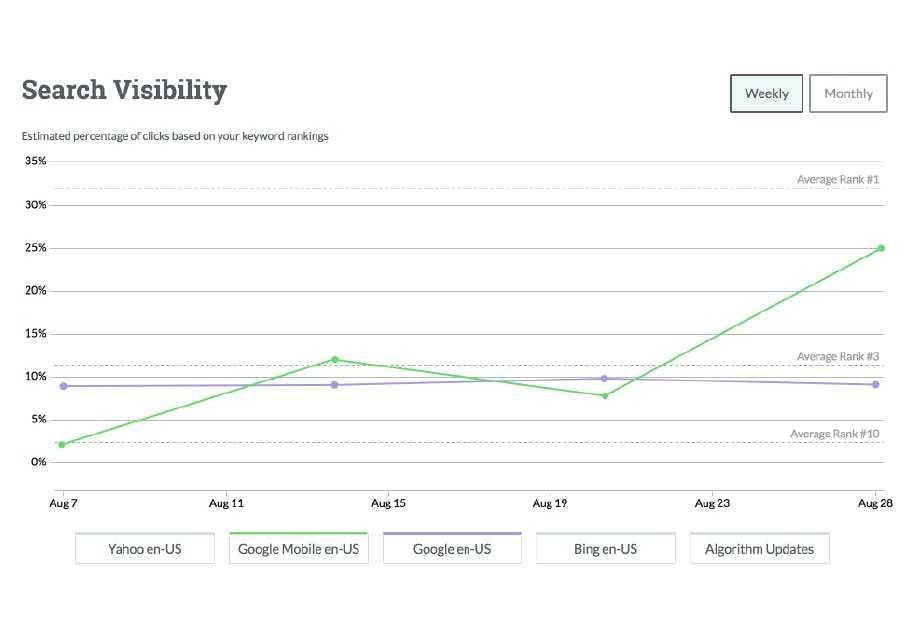 Search visibility can be tracked across a range of search engines