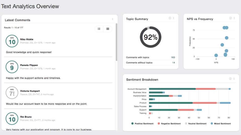 CustomerGauge text analysis overview