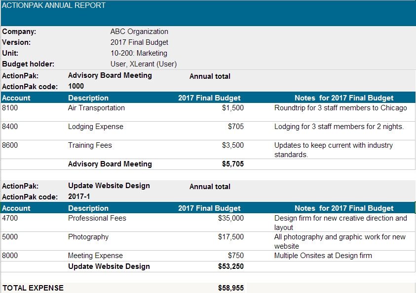 ActionPak report