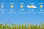 Mango Signs screenshot: Display local weather forecasts