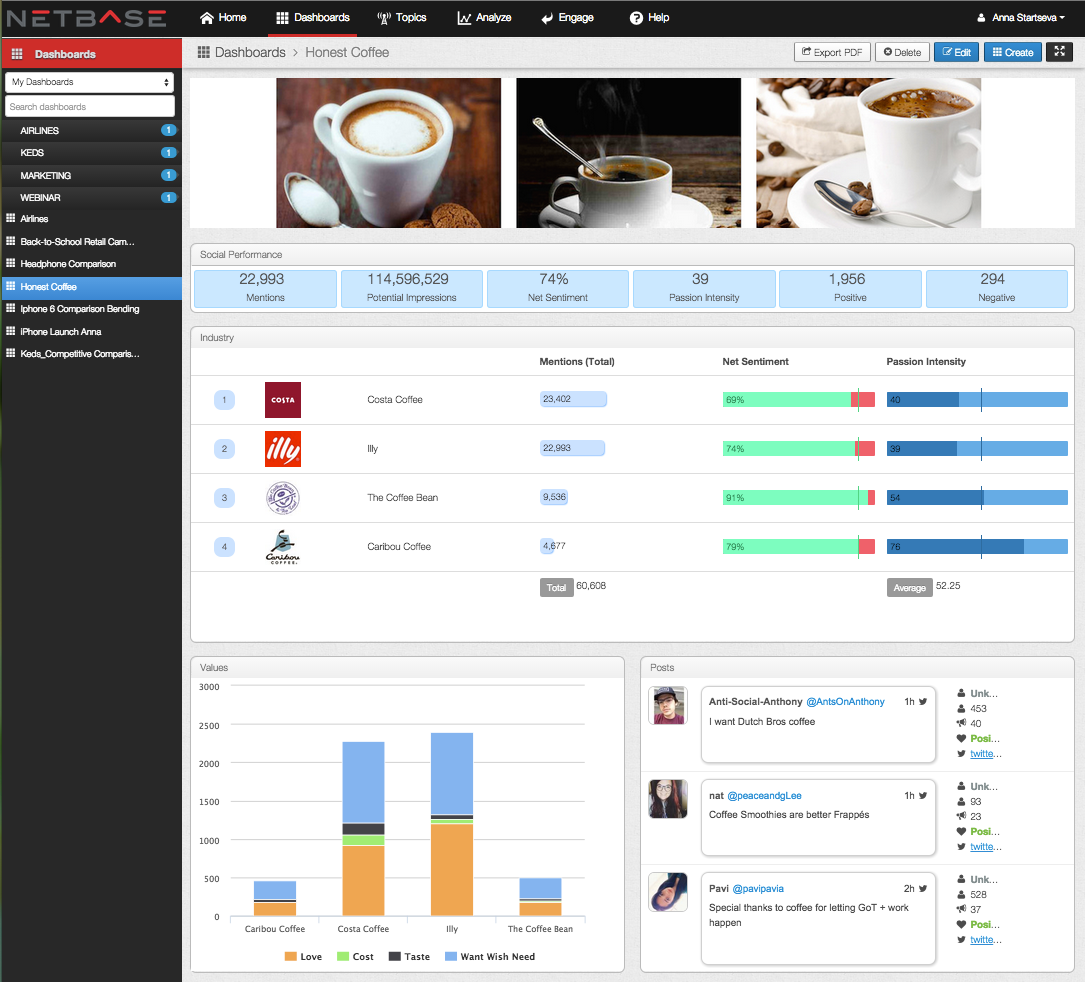 The NetBase brand analysis dashboard