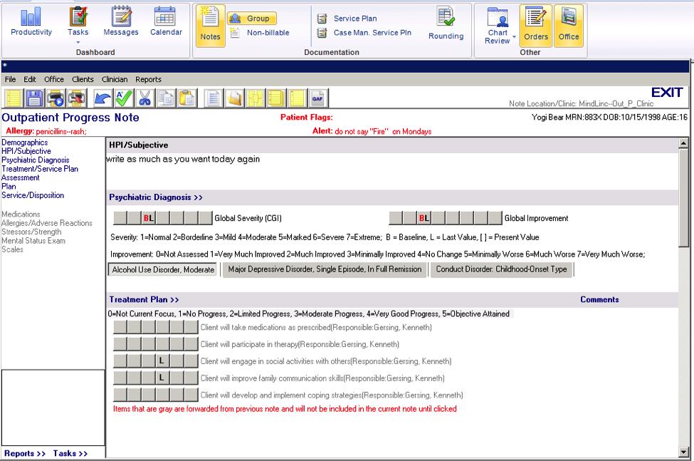 MindLinc EMR Software - Progress notes