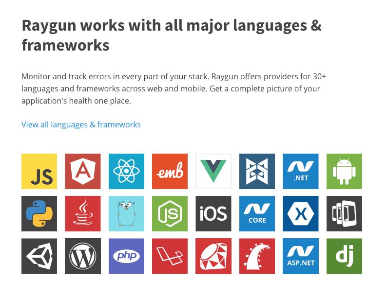 Raygun Logiciel - 3