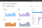 Sana Commerce screenshot: Commercial data insights available
