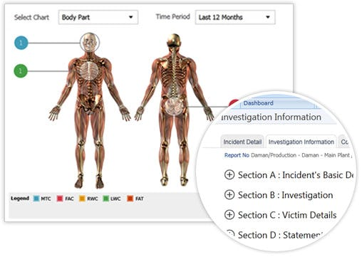 SAFE Software - Body part statistical analysis