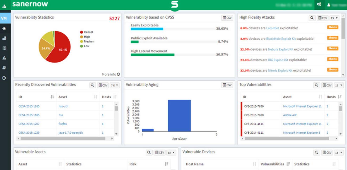 SanerNow Software - SanerNow vulnerability statistics