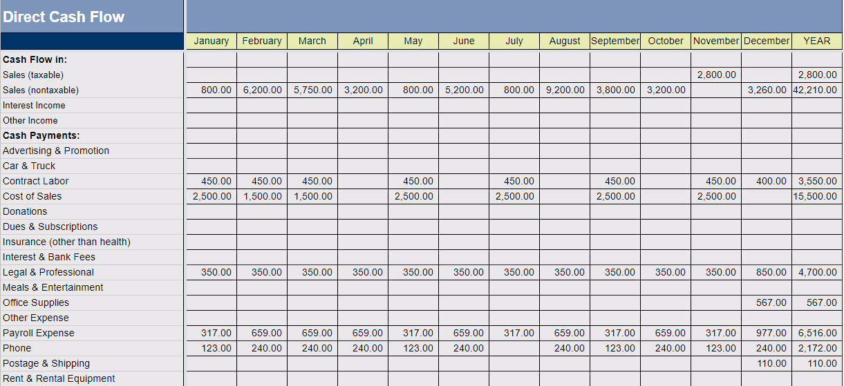 Big E-Z Bookkeeping Software - Direct Cash Flow Report