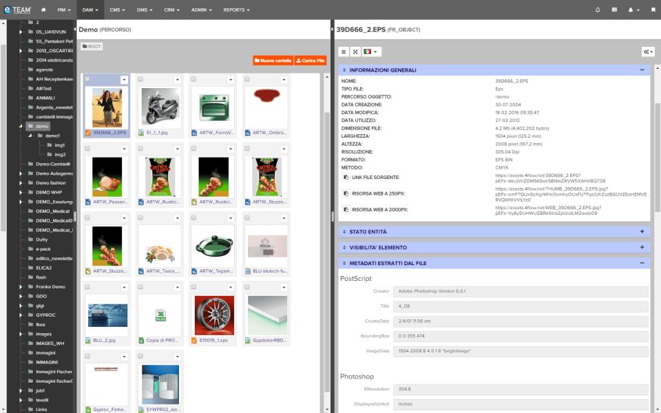 eTEAM screenshot: eTEAM digital asset management system