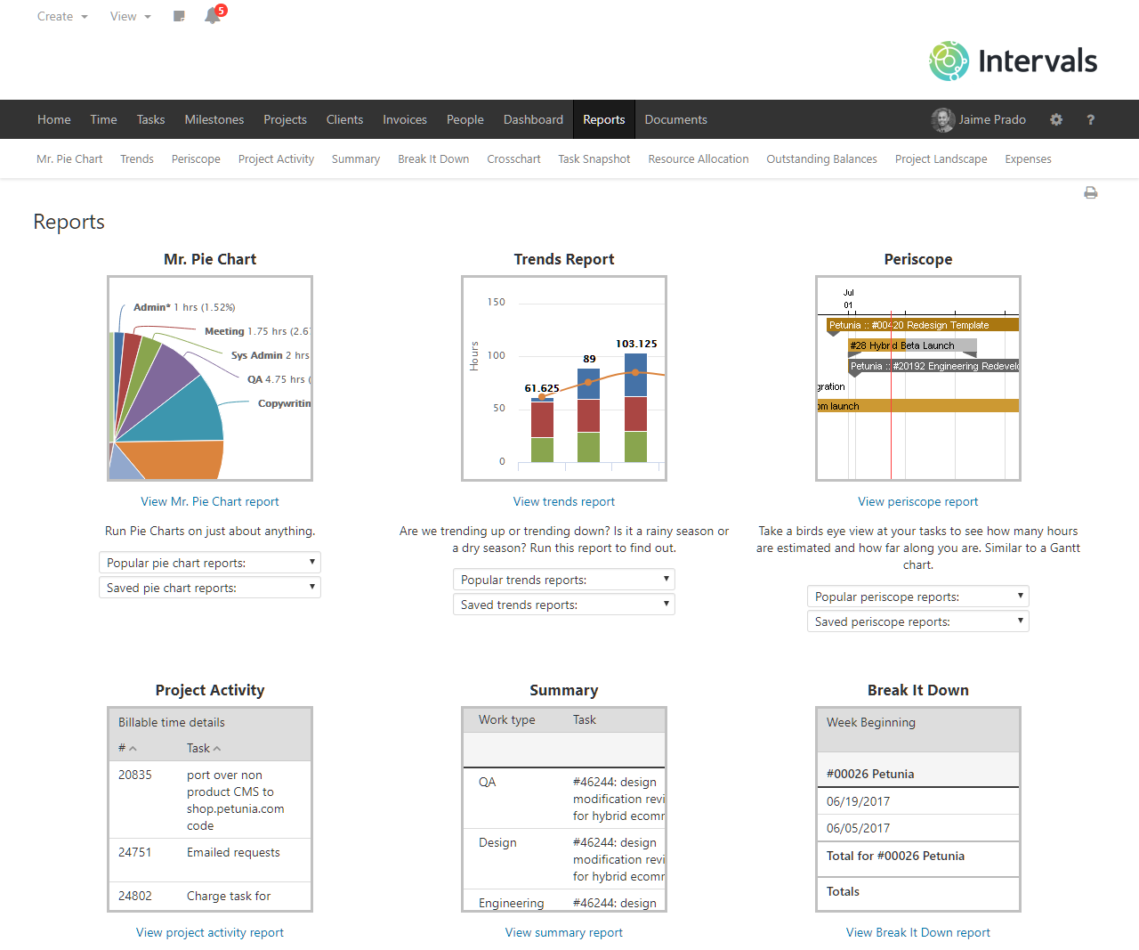 Intervals Software - Reporting to know and show where your efforts are going
